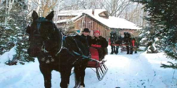 cavanaugh carriages engagement
